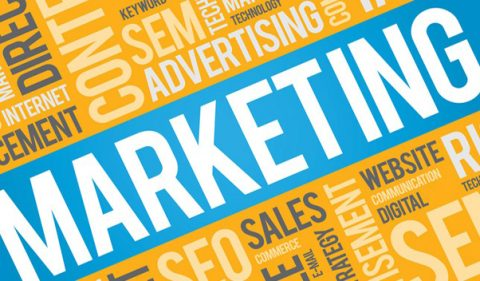 Print/Online Marketing